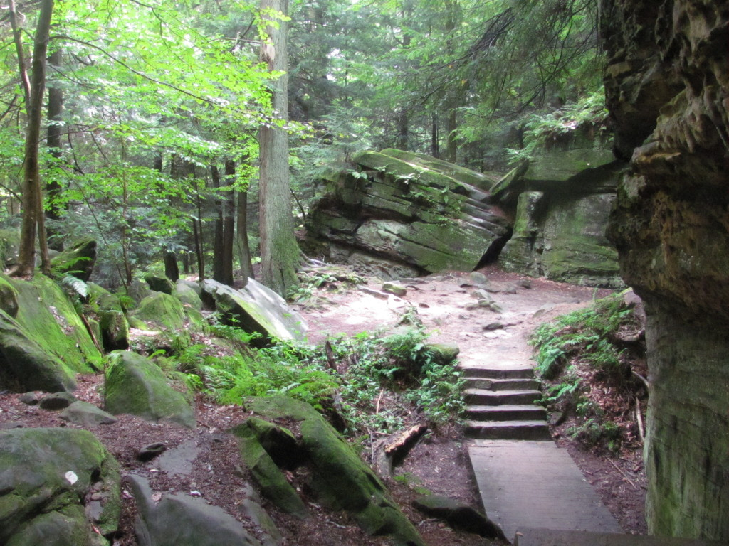 how to become a park ranger in ohio