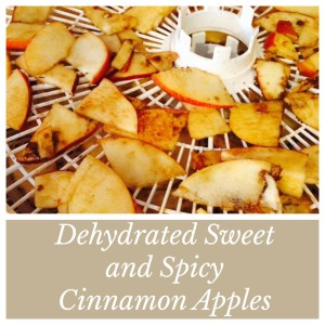 Sweet and Spicy Dehydrated Cinnamon Apples